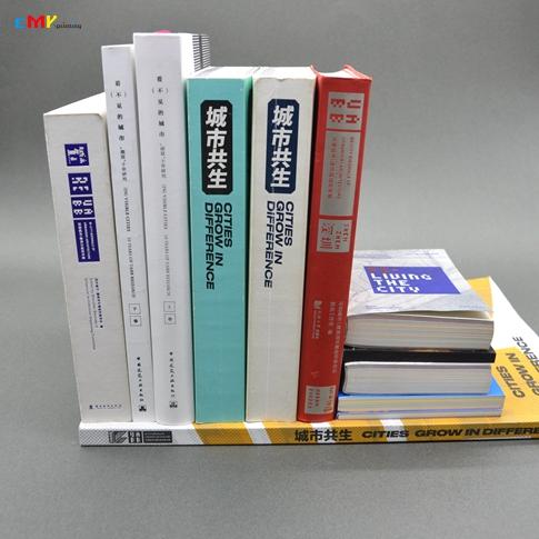 深港城市  建筑双城双年展主题年册印刷